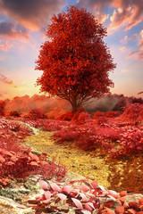 In de dag Rood traf. a mystical autumnal landscape (3d rendering)