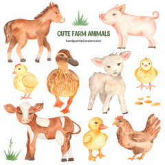 Cute farm animals horse, pig, lamb, calf, duck, duckling, watercolor chick