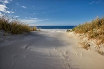 Wandering sands / dunes - Poland, Słowinski National Park, Łeba town