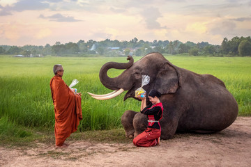 A beautiful woman in a traditional dress have a meal to the Buddhist monks.