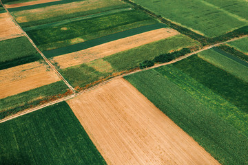 Wall Mural - Beautiful countryside patchwork pattern of cultivated landscape from drone pov