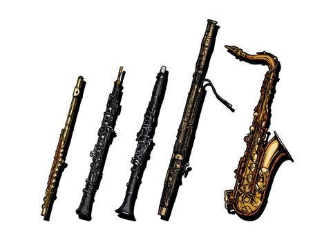Woodwind musical instruments set