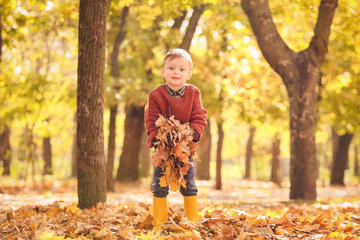 Cute little boy having fun in autumn park