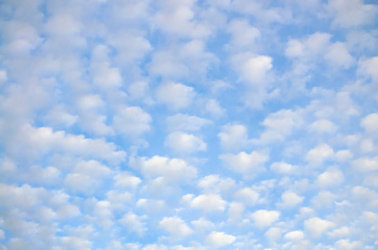 cloudscape with altocumulus clouds at sunny day