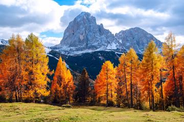 Alpe di Siusi or Seiser Alm with Sassolungo - Langkofel mountain group