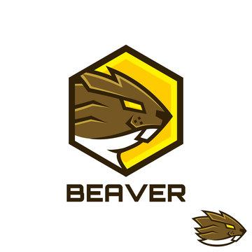 Beaver in hexagon shape logo design