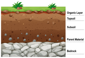 Obraz Diagram showing different layers of soil - fototapety do salonu