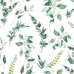 Floral seamless pattern. Watercolor plants texture. Branches and green leaves on white background.