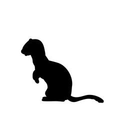 Weasel ferret silhouette. An animal of the marten family.