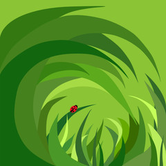 ladybug in the grass, bug, beetle, green