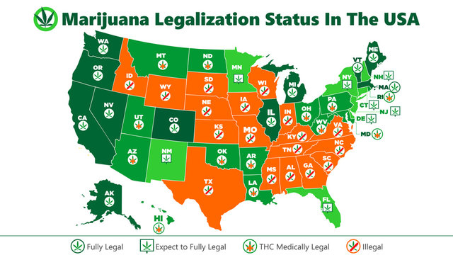 marijuana (ganja) legalization status in the USA map infographic style illustration