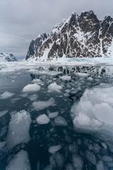 Sea ice in Pleneau Bay - Lamaire Channel - Antarctica
