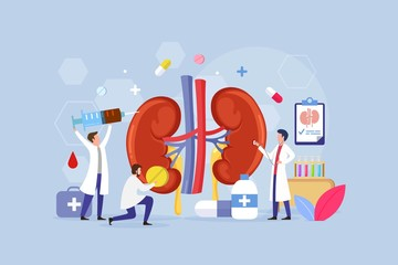 Obraz Modern process Kidney inner organs disease treatment design concept with Tiny People Character Vector Illustration - fototapety do salonu