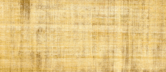 Yellow papyrus-paper background.Egyptian paper.