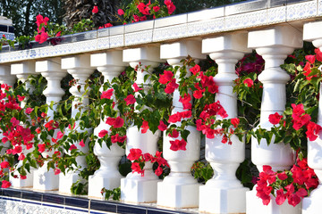 Spanish terrace with red flowers