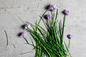 Chive blossoms on stone surface