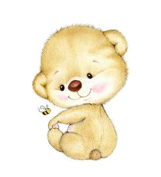 Cute baby Teddy bear on white background