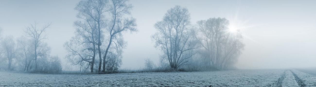 Panorama Breitbild einer Naturlandschaft bei leicher Morgensonne und starkem Nebel
