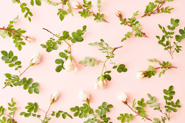 Flat lay pattern with small white flowers and green leaves on a pink background