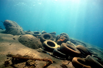 pollution marine pneu Fotomurales
