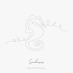 continuous line drawing. seahorses. simple vector illustration. seahorses concept hand drawing sketch line.