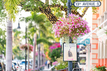 Naples, USA - April 29, 2018: Colorful flowerpot hanging basket on avenue in Florida downtown beach city town during sunny day, street