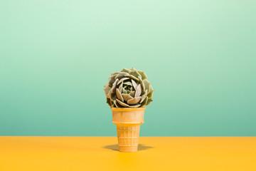 Succulent in Ice Cream Cone on Pastel Colors Conceptual Art