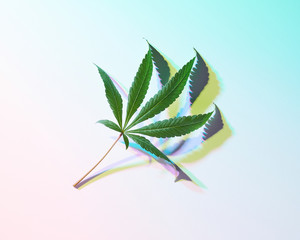 Cannabis Leaf with Psychedelic Colors Backgrounds and Shadows