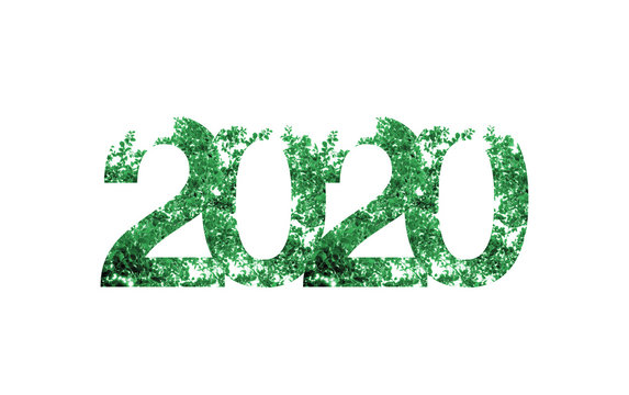 2020 happy new year with green leaf texture on white background,Nature eco concept,organic greeting card holiday.banner space for adding text