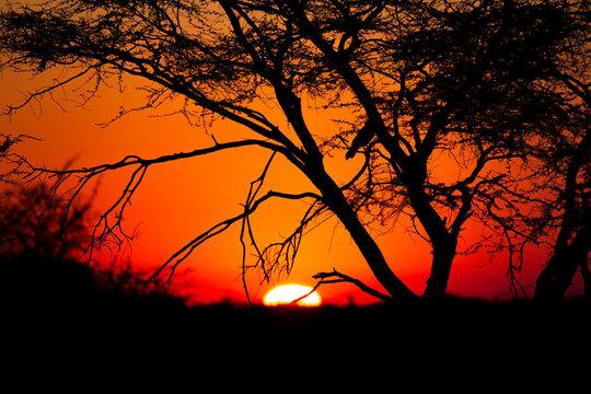 Coucher de soleil au Waterberg en Namibie
