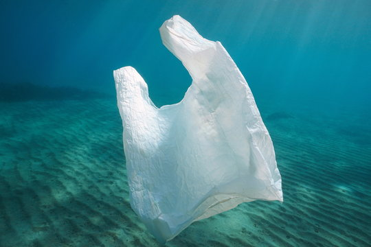 Plastic pollution, a white plastic bag underwater in the ocean