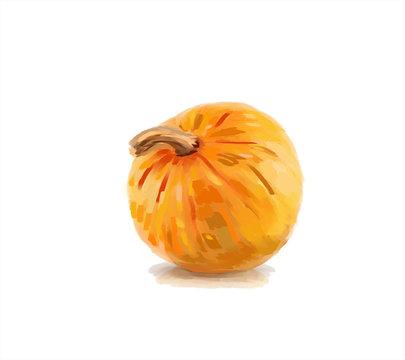 Orange pumpkin illustration