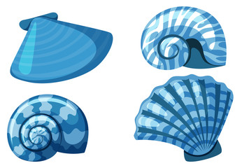 Four types of shells in blue color