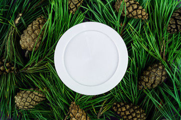 Jar  cream on the background of spruce branches. Mockup for your label. Natural cosmetics.