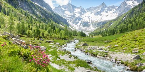 Fototapeta Panorama einer Landschaft mit Wildbach und Gletscher im sommerlichen Zillertal in Tirol Österreich obraz