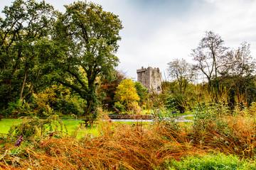 autumn park with  Blarney Castle near cork, Ireland