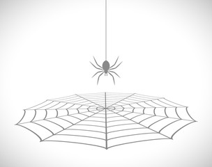 spider in net 3d icon