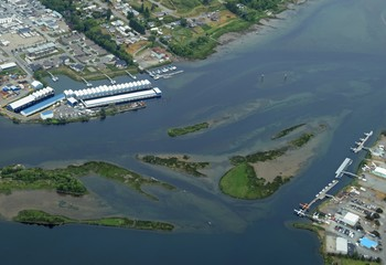 aerial view of North Campbell River where the river enters the ocean, Vancouver Island; British Columbia Canada