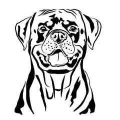 Head portrait contour outline, sketch of German Rottweiler silhouette vector illustration