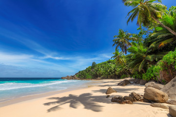 Poster Beach Tropical Sunny beach and coconut palms on Seychelles. Summer vacation and tropical beach concept.