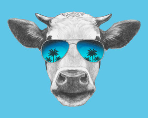 Portrait of Cow with sunglasses. Hand-drawn illustration. Vector isolated elements.
