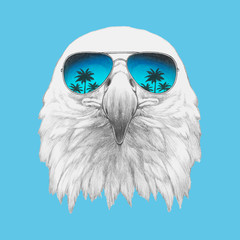 Portrait of Eagle with sunglasses. Hand-drawn illustration. Vector isolated elements.