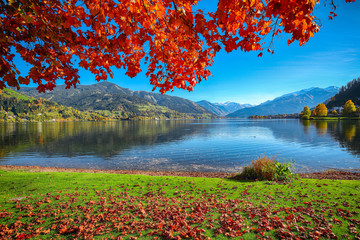 Türaufkleber Violett rot Spectacular autumn view of lake and trees in city park of Sell Am See