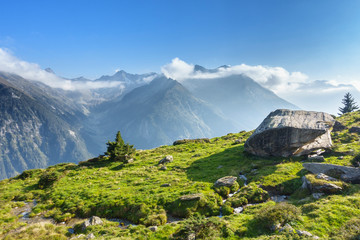 Fototapete - riesiger Feldblock auf einer Almwiese mit Blick über die Alpen im Zillertal