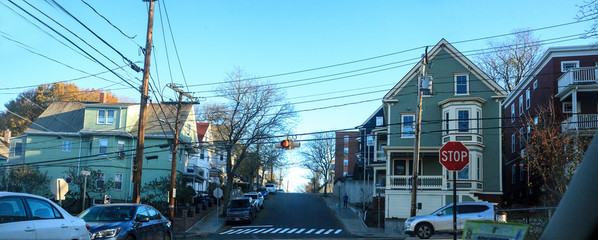 Fototapeta Tree-lined street in a rural Somerville neighborhood in the Fall in the outskirts of Boston. obraz
