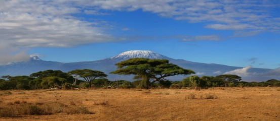 Foto op Canvas Afrika Mount Kilimanjaro -the roof of Africa, Tanzania