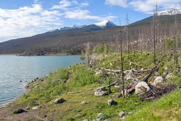Kanada, Medicine Lake an der Maligne Lake Road im Jasper Nationalpark