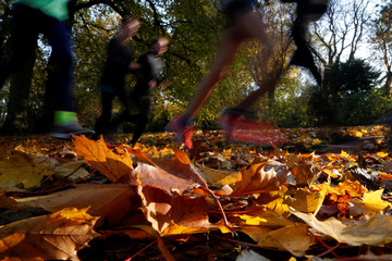 People run as golden, green and rusty leaves colour the autumn at the public garden in Cambrai