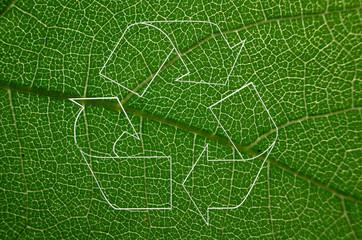 recycling symbol nature eko bio organic