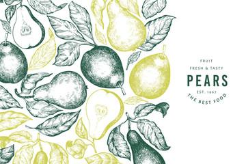 Pear design template. Hand drawn vector garden fruit illustration. Engraved style garden retro botanical banner. Fototapete